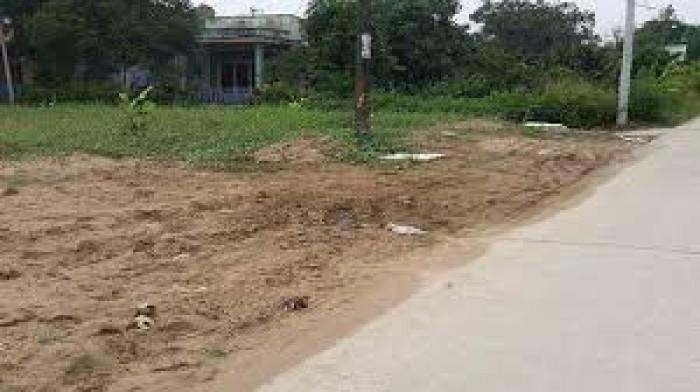 Cần bán đất mặt tiền Đoàn Nguyễn Tuân, 800 m2, Bình Chánh