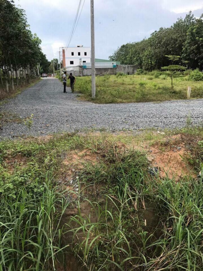 Bán lô đất 89m2, đường DA1, Chánh Phú Hoà, Mỹ Phước