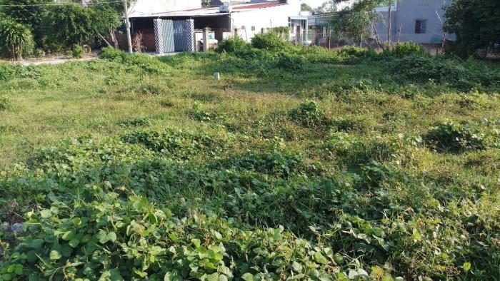 Cần Bán Đất Nền 2/653 Vĩnh Thanh Nhơn Trạch