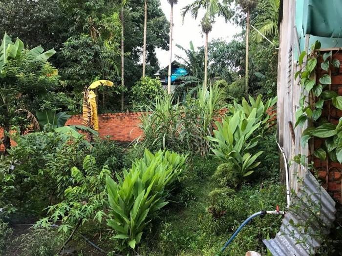Bán nhà vườn hẻm Nguyễn Tri Phương gần Phú Mập - 420m2