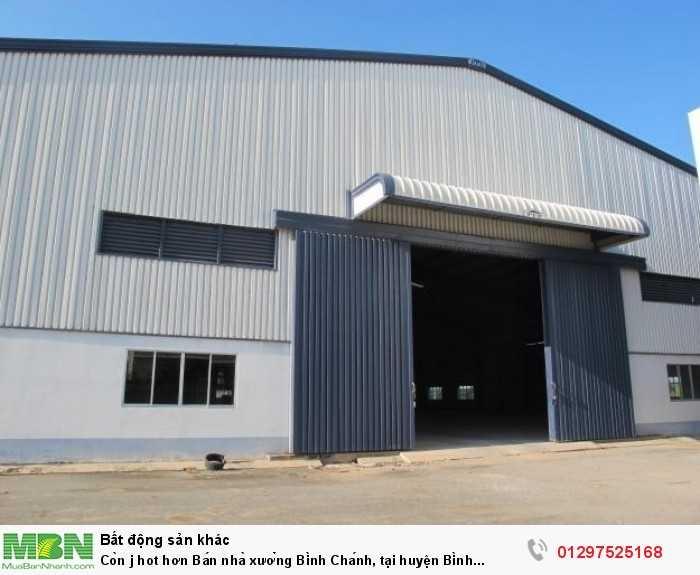 Bán nhà xưởng Bình Chánh, tại huyện Bình Chánh, SHR