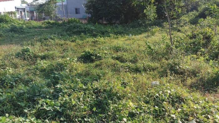 Ra gấp lô đất ấp3 xã Vĩnh Thạnh Nhơn Trạch