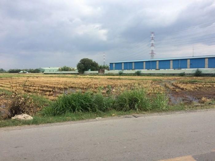 Đất nền củ chi giá F1 diện tích 85m2 sổ riêng giá 381tr/30%