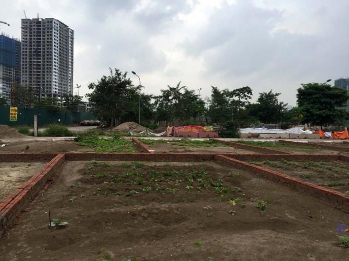 Bạn Cần Tìm Đất Khu Biệt Thự Phú Mỹ An , P. An Đông