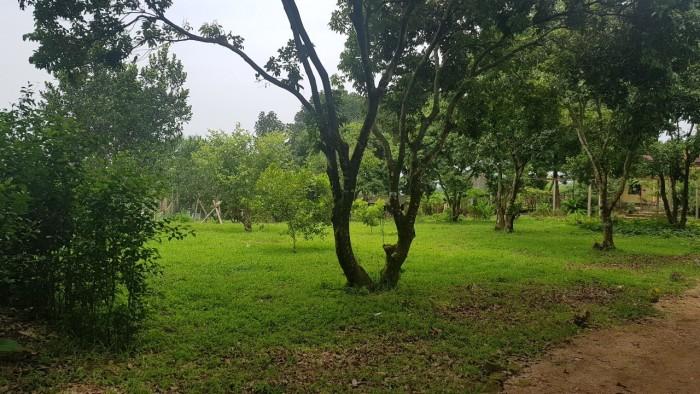 Bán 6.900 m2 đất thổ cư xã Nhuận Trạch, huyện Lương Sơn, Hòa Bình