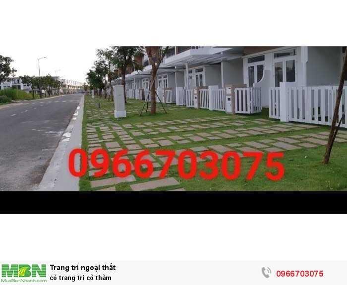 Cỏ trang trí cỏ thảm1