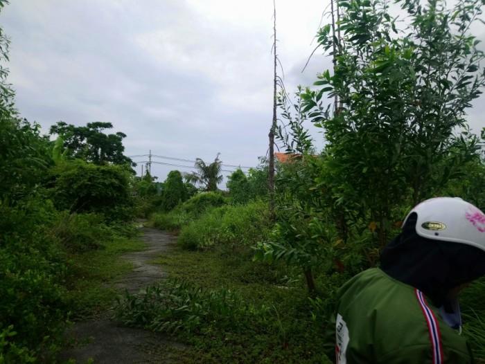 Chú 3 chia tài gia sản bán lô đất 260m2 Đường Lê  Văn Lương, Nhơn Đức, Nhà Bè
