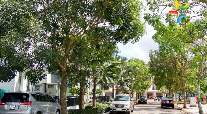 Tôi chính chủ cần bán lô đất đẹp tại khu dân cư Amazing City Bình Chánh.