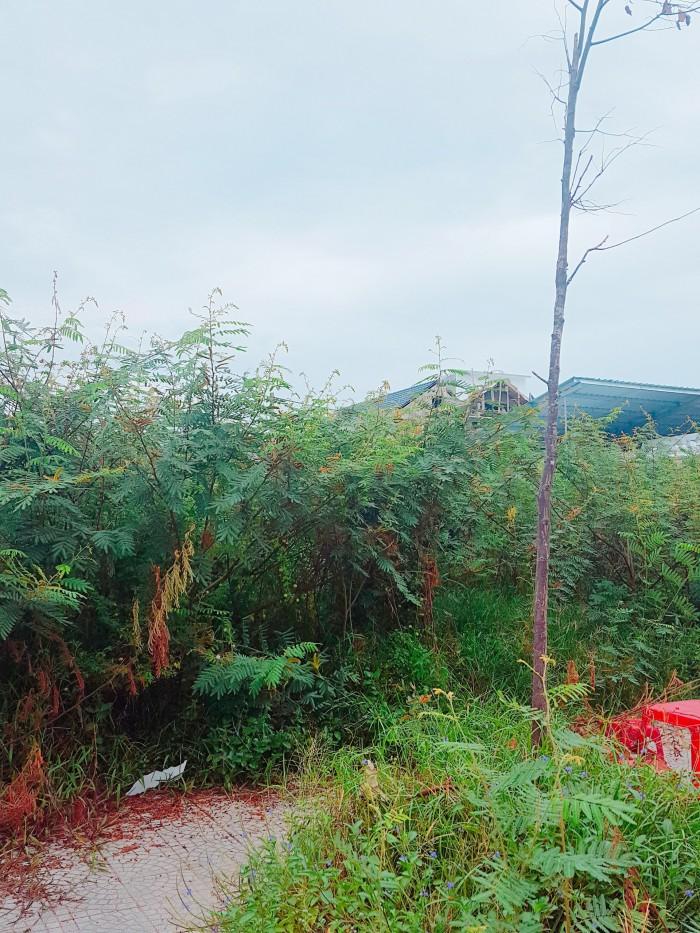 Cơ hội sở hữu lô đất đẹp mặt tiền Nguyễn Duy Trinh giá 20,8 tr/m2