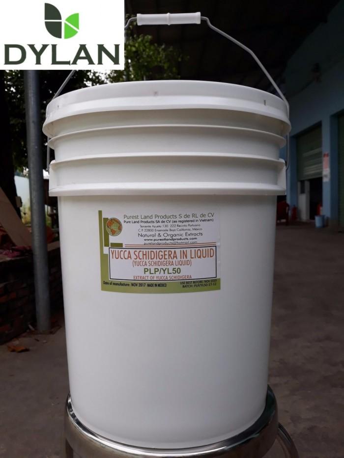 Yucca nguyên liệu khử khí độc ao nuôi