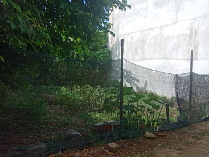 Bán đất đẹp ở đường Phạm Thị Liên, Phường Kim Long