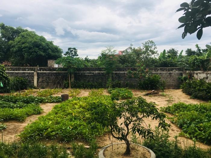 824m2 đất + Nhà trệt đổ mê mới tinh + Vườn cây trái đủ loại