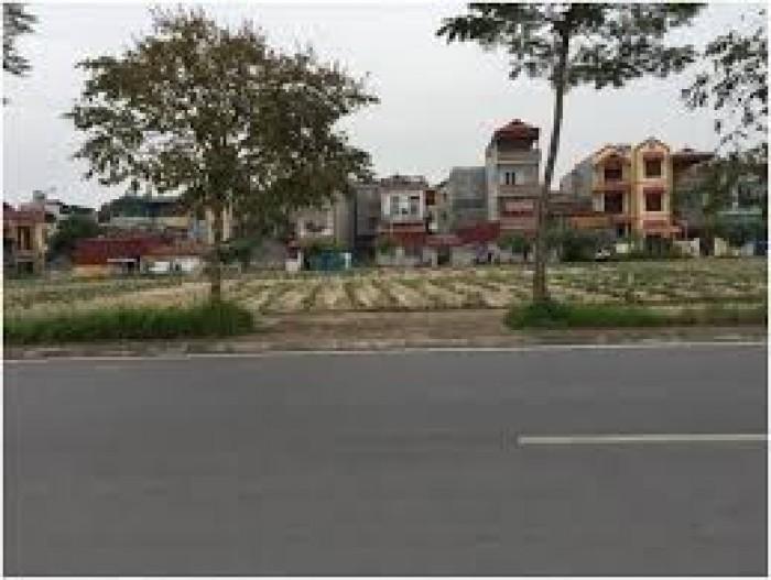 Bán đất khu đô thị 31ha, Trâu Quỳ, diện tích 77m2