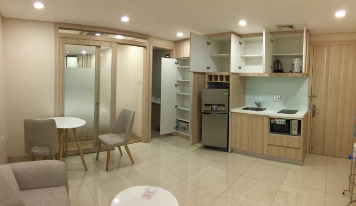 Cho thuê căn hộ tại Nguyễn Bỉnh Khiêm Quận 1, 40m2, Full nội thất