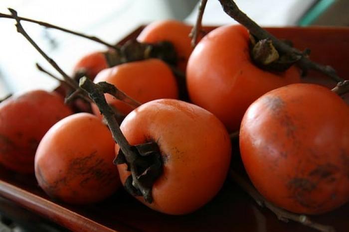 Hồng nhân hậu, giống hồng nhân hậu đẹp mê ly, cung cấp số lượng lớn.6