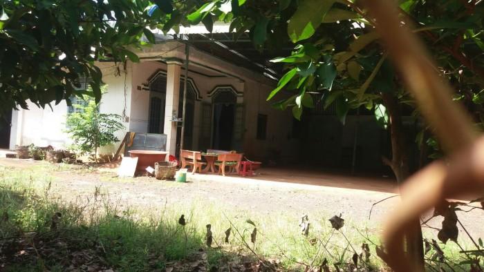 Bán Nhà Xưởng Tân Long Phú Riềng Bình Phước