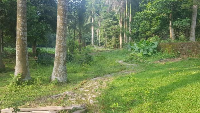Bán nhà vườn 9.397m2 tuyệt đẹp tại Lương Sơn, Hòa Bình