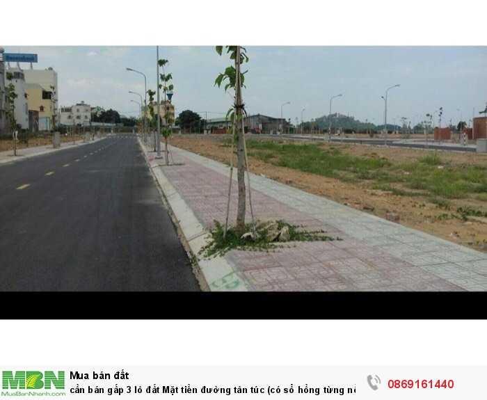 Cần bán gấp 3 lô đất Mặt tiền đường Tân Túc (có sổ hồng từng nền )