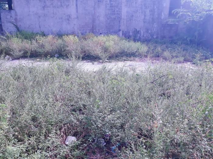 Đất Kiệt Điện Biên Phủ 440 Triệu