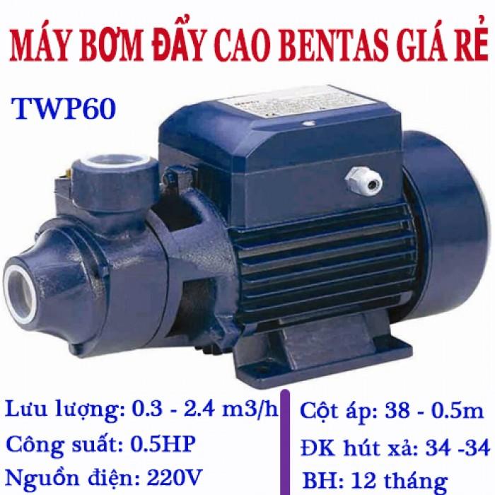 TWP60-0.5HP1