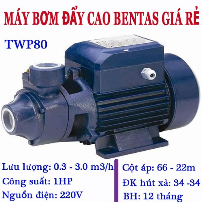 TWP80-1HP0
