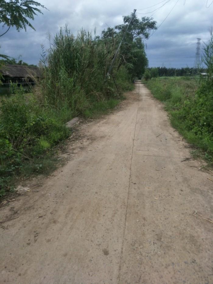 Bán đất đường Phạm Hữu Lầu_Phước Kiển DT:1000m2