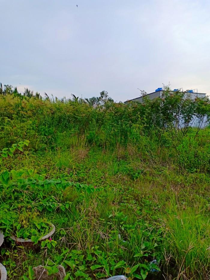 Bán lô đất DT: 260m2  hẻm đường Lê Văn Lương_Nhơn Đức