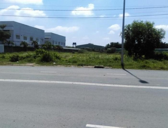 Bán miếng đất 1550m2 có 850m2 thổ cư ở Quốc lộ 50, Bình Chánh