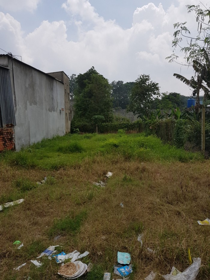 Đất 8x25m, xã Phước Vĩnh An, Củ Chi