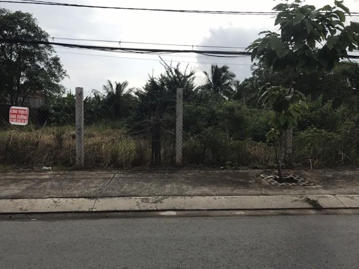 Cần bán lô đất ngay cụm KCN Cầu Tràm, Đinh Đức Thiện, Bình Chánh.