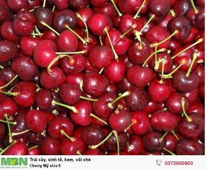 Đặt mua Cherry Mỹ size 8.5 nhập khẩu