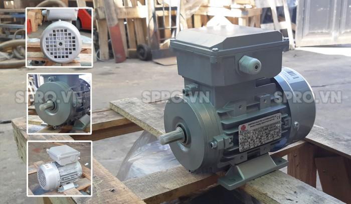 Động cơ mô tơ điện Enertech ESS000184 1 pha công suất 0.25 Hp