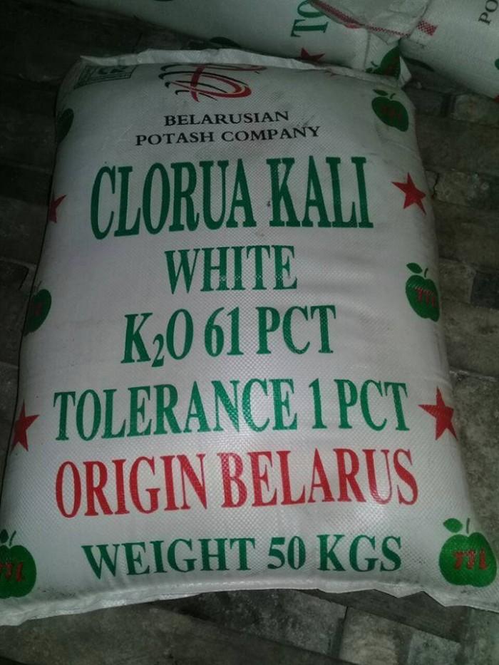 Mua Kali,Bán kali, mua KCl, bán KCl, KCl giá rẻ, KCL giá tốt, Phân bón Kali, giá KCl, mua KCl giá rẻ ở đâu1