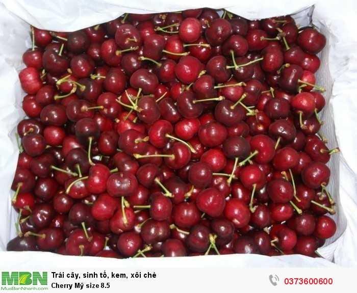 Cherry Mỹ size 8.51