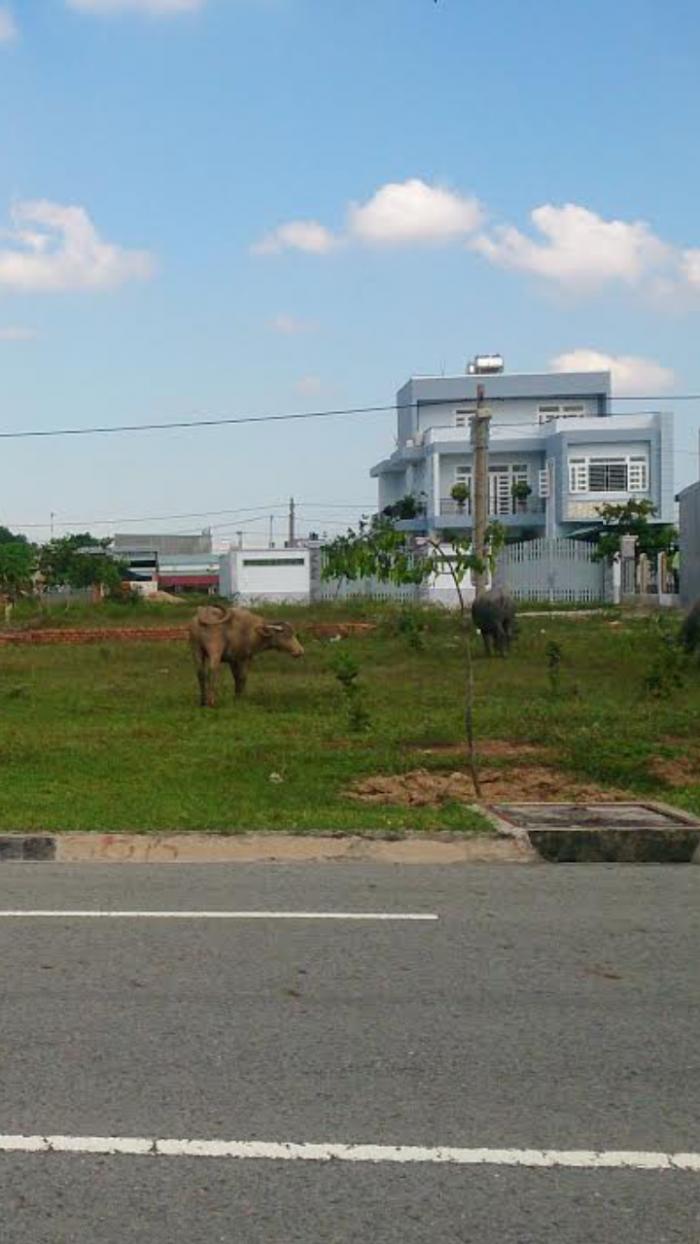 Bán đất mặt tiền đường giá rẻ gần sân bay Long thành