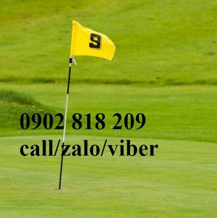 Cờ sân golf, lá cờ golf vải có cán nhựa1