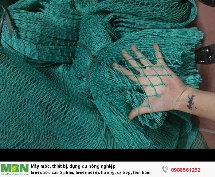 Lưới cước cào 5 phân, lưới nuôi ốc hương, cá bớp, tôm hùm0