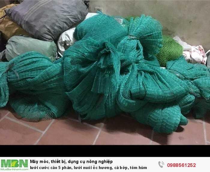 Lưới cước cào 5 phân, lưới nuôi ốc hương, cá bớp, tôm hùm2
