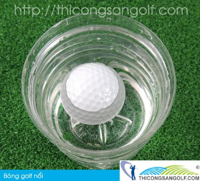 Bóng golf nổi cao cấp tại Hà Nội1