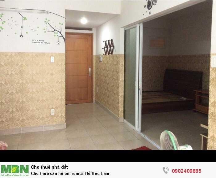Cho thuê căn hộ emhome3 Hồ Học Lãm