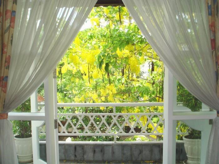Ngôi Villa hai mặt tiền khu cao cấp Thảo Điền, Q.2, DT đất 700m2 (TL)