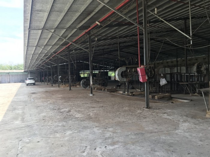 Bán Nhà Xưởng Công Ty Tại Tân Phước Đồng Phú Bình Phước Diện tích:53000m2 SKC 10.000m2,