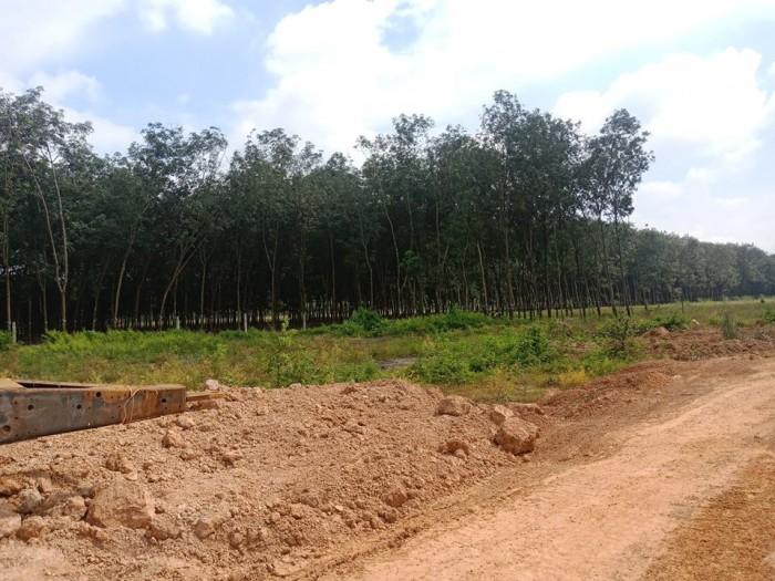 Bán đất đầu tư gia đoạn 1 mặt tiền đường chợ