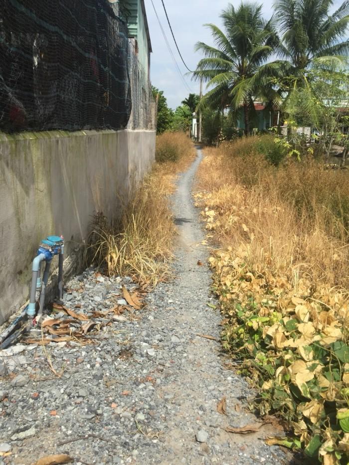 Cần bán gấp 300 m2 đường Tam Bửu Tự, xã Đa Phước, Bình Chánh.