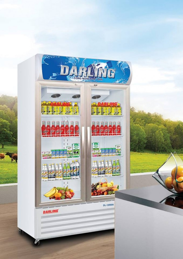 Tủ Mát Darling DL-12000A1