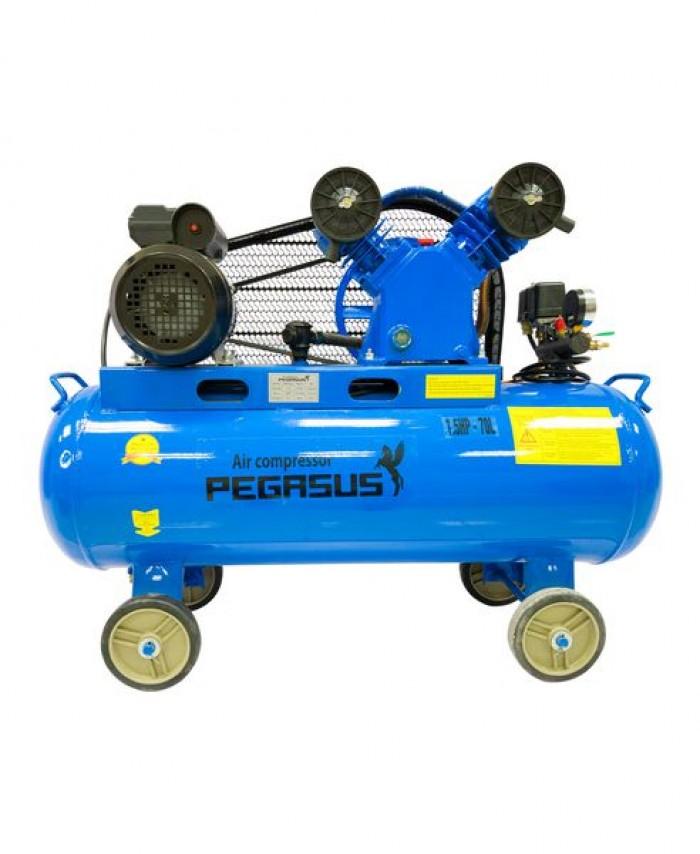 Máy nén khí dây đai PEGASUS TM-V-0.12/8-70L1