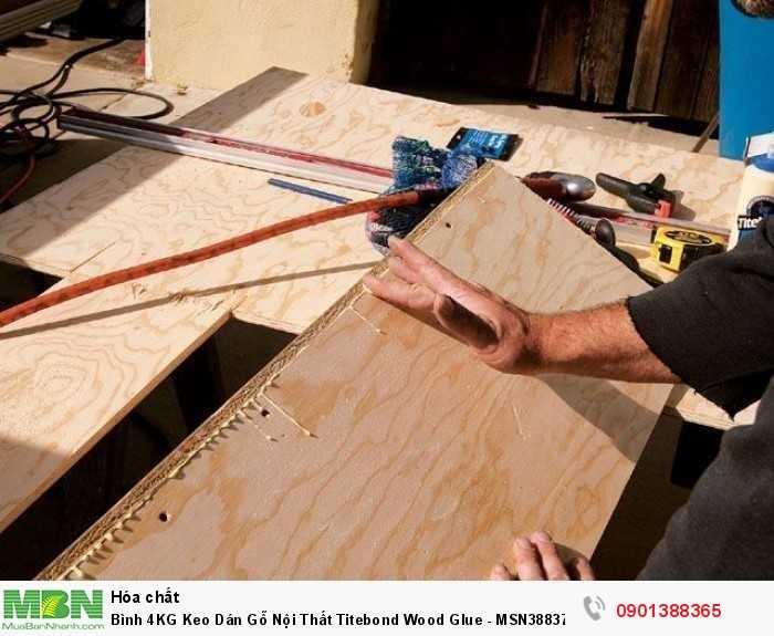 Titebond Original là trợ thủ đắc lực cho bất kỳ nhà sản xuất đồ gỗ nào muốn tạo ra các sản phẩm chuyên nghiệp.2