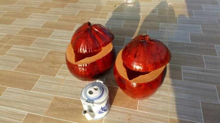 Bình giữ ấm trà bằng trái dừa1