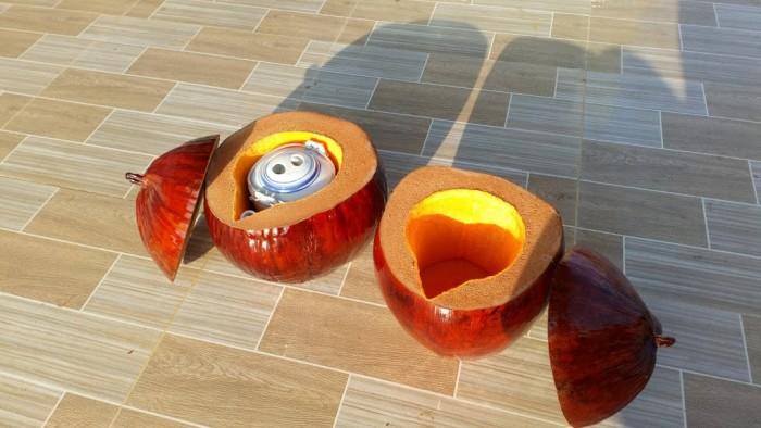 Bình giữ ấm trà bằng trái dừa2