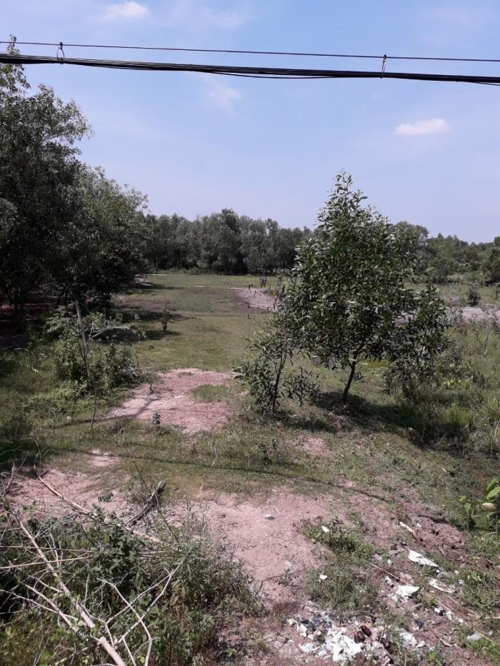 Đất Nền Lớn 82m X 200m,Nở Hậu 150m Đường Nhựa Nguyễn Văn Khạ Thuộc Xã Phú Hòa Đông, Củ Chi
